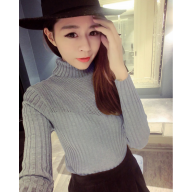 Sweater - 高领长袖针织衫